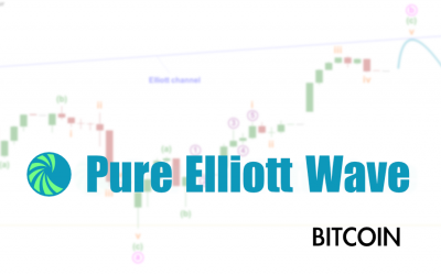 Cardarno: Elliott Wave and Technical Analysis – Video – October 13, 2021